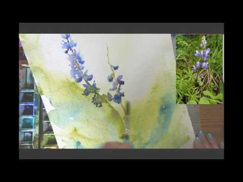 Watercolor Lesson: Painting Lupines with a Wet in Wet Background by Angela Fehr