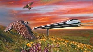 Разоблачение Sky Way - Струнный транспорт Юницкого(Для реализации Транснационального Проекта ищу соинвесторов. Ноу-Хау защищённое юрисдикцией Великобритани..., 2015-06-05T05:26:26.000Z)