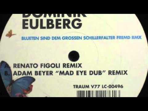 Dominik Eulberg - Blueten Sind Dem Grossen Schillerfalter Fremd (Adam Beyer Mad Eye Dub Remix) mp3