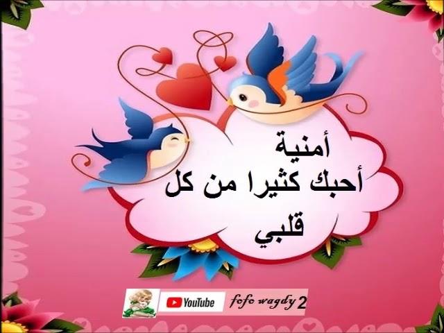 عيد ميلاد سعيد حبيبتى أمنية Youtube