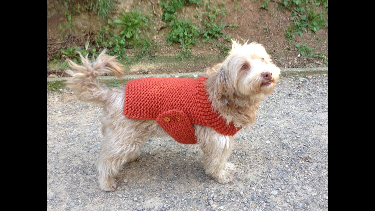 Knitting Coats For Dogs : How to loom knit a dog sweater coat diy tutorial youtube