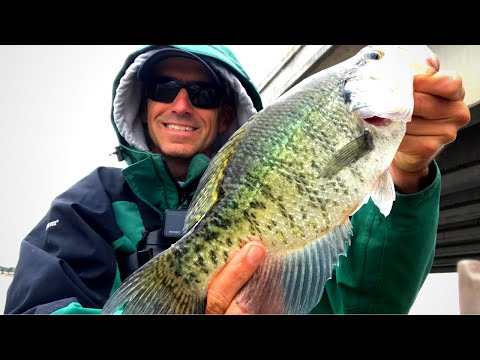 OCTOBER CRAPPIE FISHING (2020) Catching Crappie On A Windy Day Using Heavy Jigs