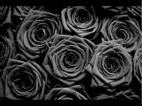 Flores Negras Federico Mizrahi Demoliendo Tangos Shazam