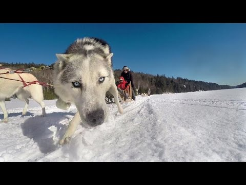 JPdL Vitamine Canada  Voyage Incentive d'hiver
