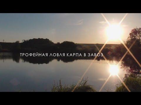 Карпфишинг: ловля карпа на бойлы в завоз с Технокарп Team.