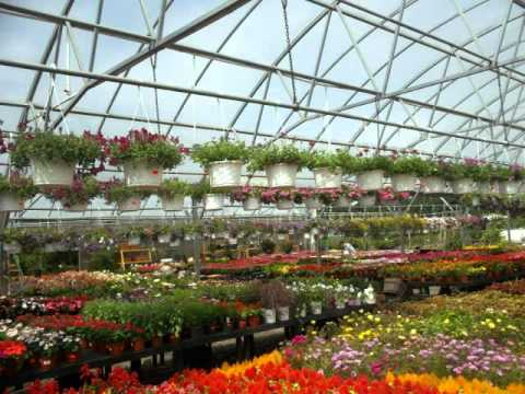 Condursos Garden Center Montville NJ YouTube
