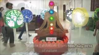 Celebration of Science Exhibition
