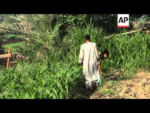 The seeds of organic farming being sown in parts of Egypt