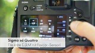 Sigma sd Quattro - Sigmas erste DSLM-Kamera im Test [Deutsch]