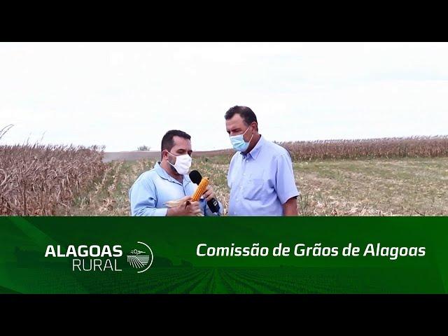 Comissão de Grãos de Alagoas realiza Dia de Campo em Atalaia