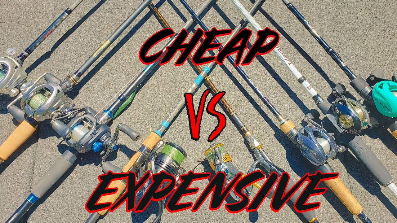 Cheap Vs. Expensive Fishing Rods - Which Should You Buy? - YouTube