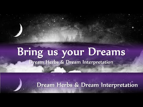 Dream herbs Plant People discussion
