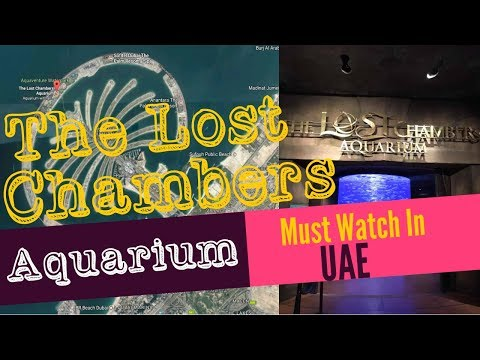 The lost Chambers Aquarium-The Palm , United Arab Emirates