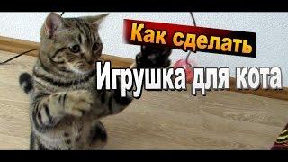 Как сделать - простая игрушка для кошки своими руками / Поделки для кошек Sekretmastera