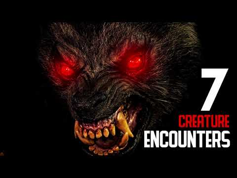 REPTILIAN ENCOUNTERS - EPISODE #001 - (Crocodilian Beings, Demon Lizards) - What Lurks Beneath from YouTube · Duration:  27 minutes 55 seconds