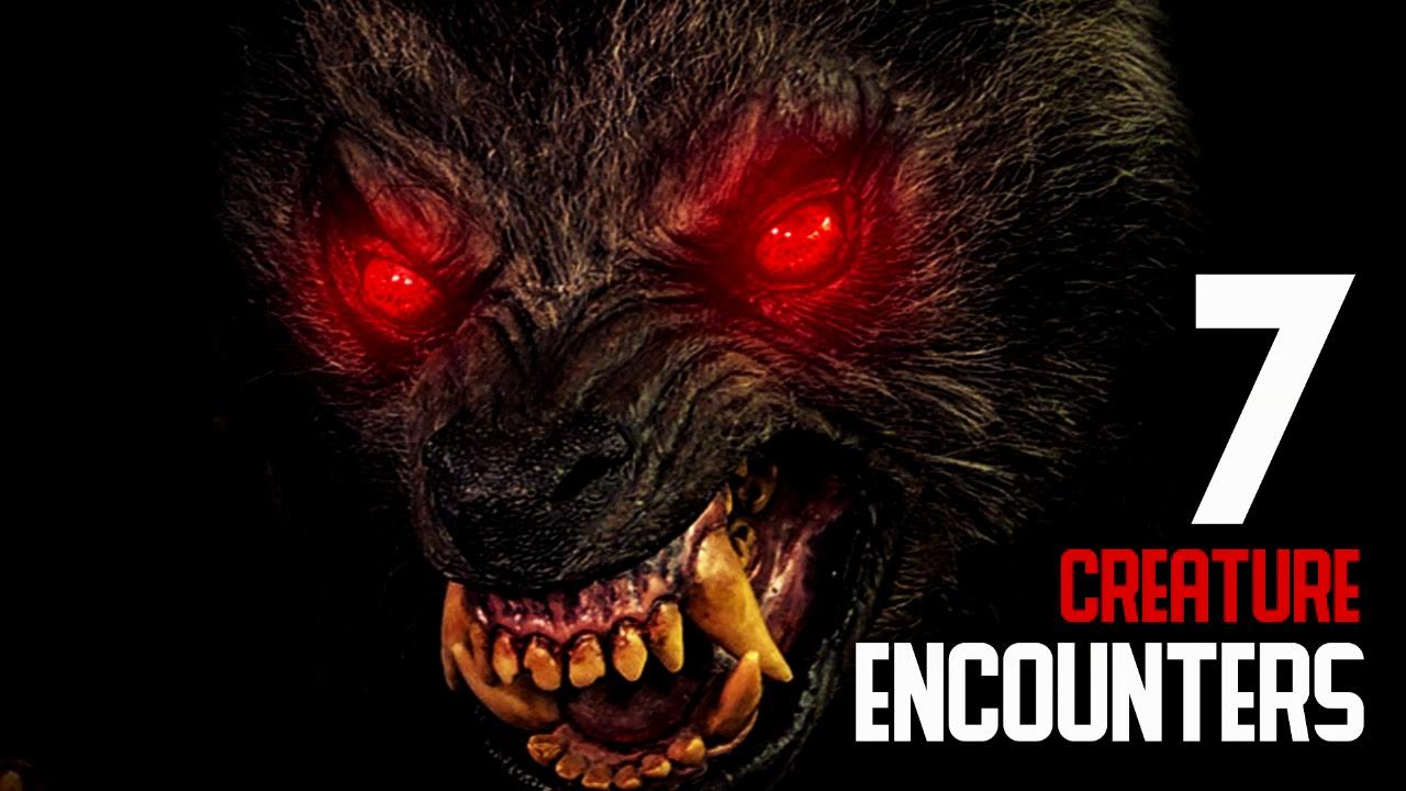 7 CREEPY DOGMAN & CREATURE ENCOUNTERS (Dogman, Wendigo ...