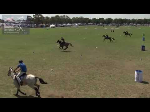 FLAG AND BARREL RACE SPORTING HORSE AUSTRALIA
