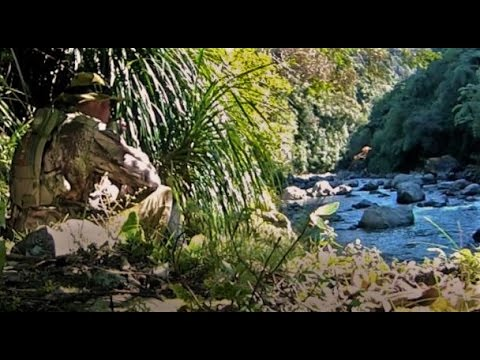 Fly Fishing NZ's World Famous Black Creek