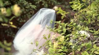 Nilüfer ve Onur Düğün Klibi