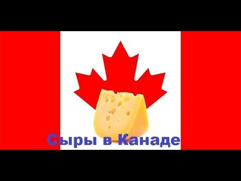 Cheese in Canada Сыры в Канаде -цены и ассортимент