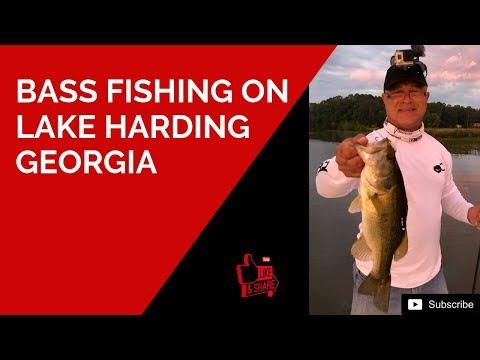 Bass Fishing At Lake Harding Georgia - Late Spring Shad Spawn