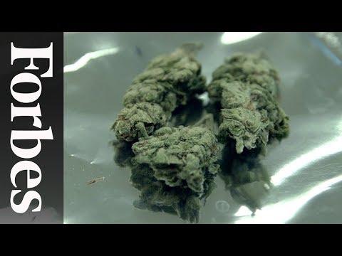 Adventures In Online Drug Buying | Forbes