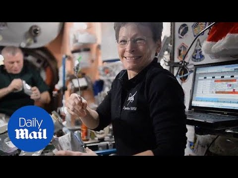 NASA announces the retirement of astronaut Peggy Whitson - Daily Mail