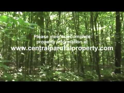 Central PA 69.95 Acre Wooded Land Parcel For Sale