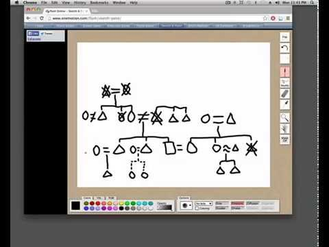 How To Draw A Kinship Diagram Youtube