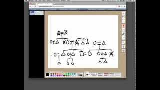 How To Draw a Kinship Diagram