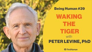 ▶️ sign up for our newsletter: http://www.firsthuman.com/being-human-newsletter/in this episode i speak with a major thinker and pioneer in the field of trau...