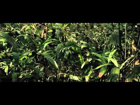 youtube filmek - Mutánsok Szigete.(teljes film )