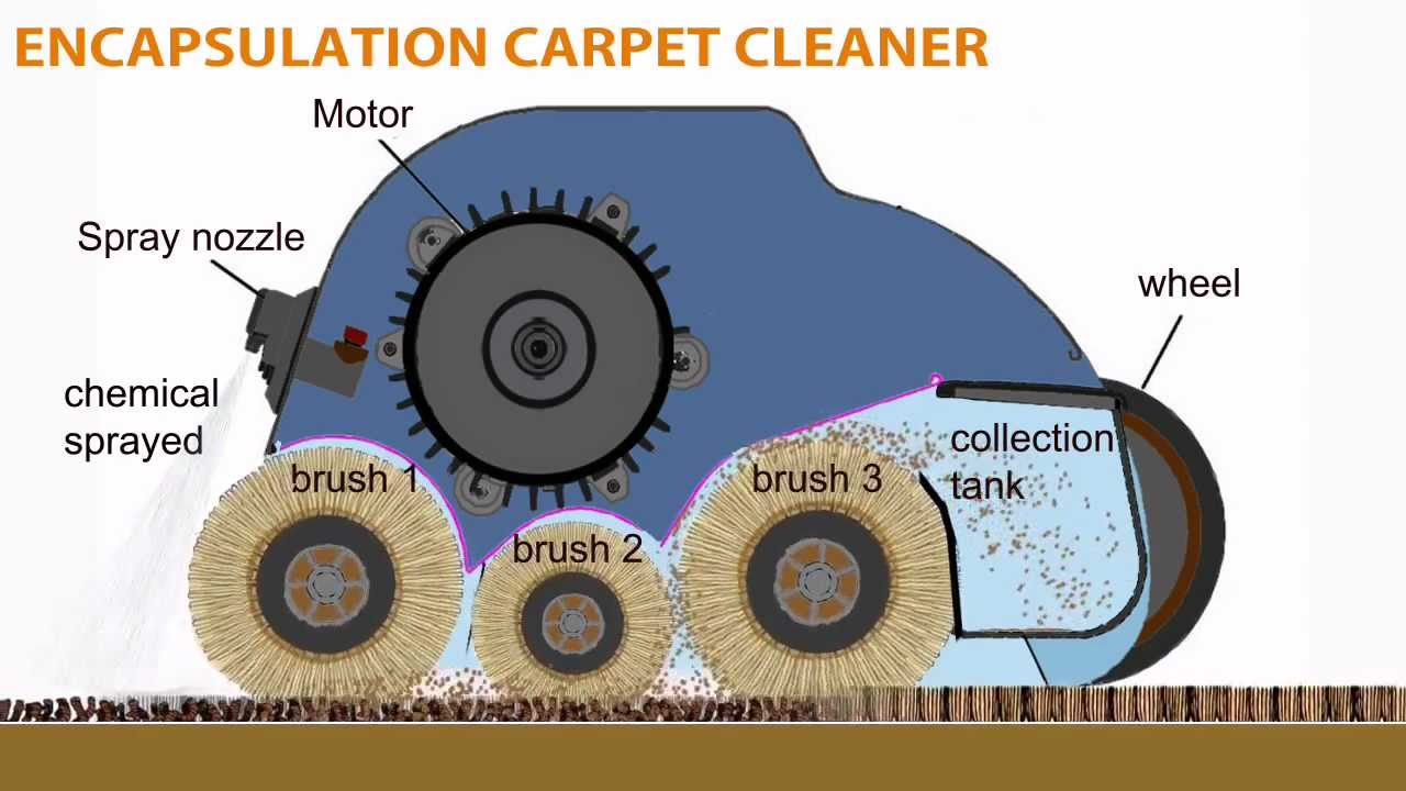 Smart Care Trio Carpet Cleaning System From Whittaker