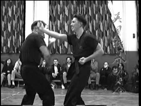 Wing Chun Hand Skills, Combinations and Gates
