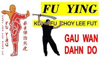 vajon a kung fu lefogy