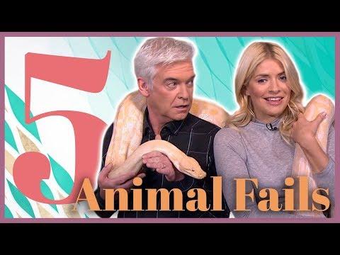 Top 5 Animal