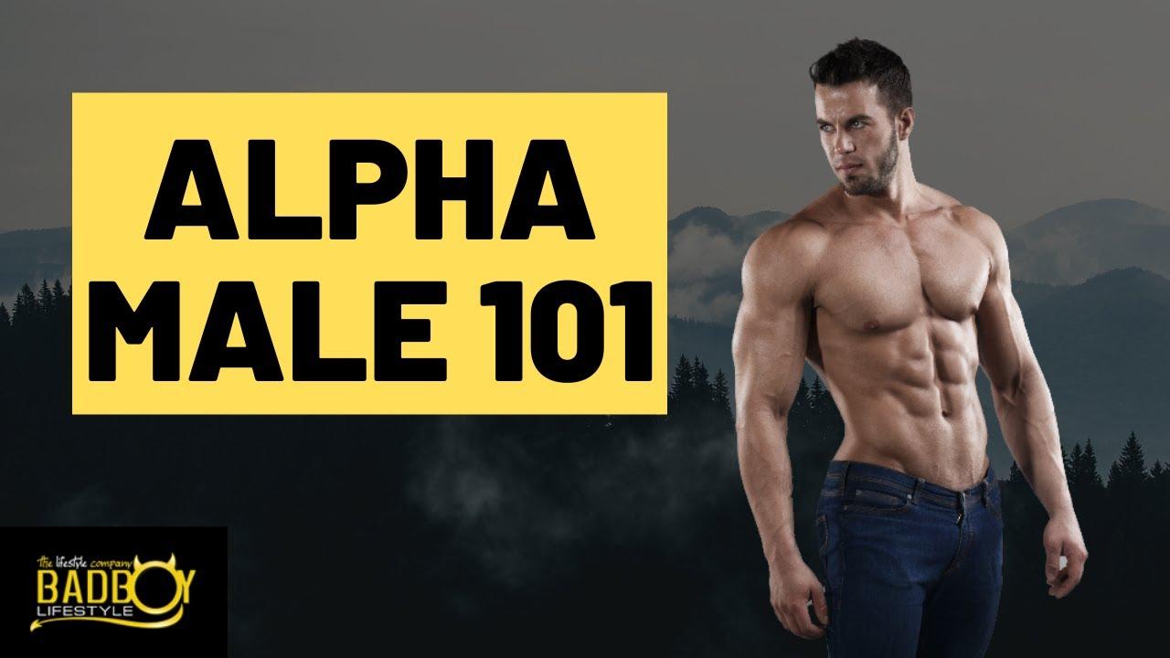 What is an alpha cuck