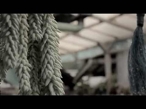 Adhitia Sofyan - After the Rain [Short Version]