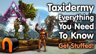 ARK Extinction TAXIDERMY Everything You Need To Know!