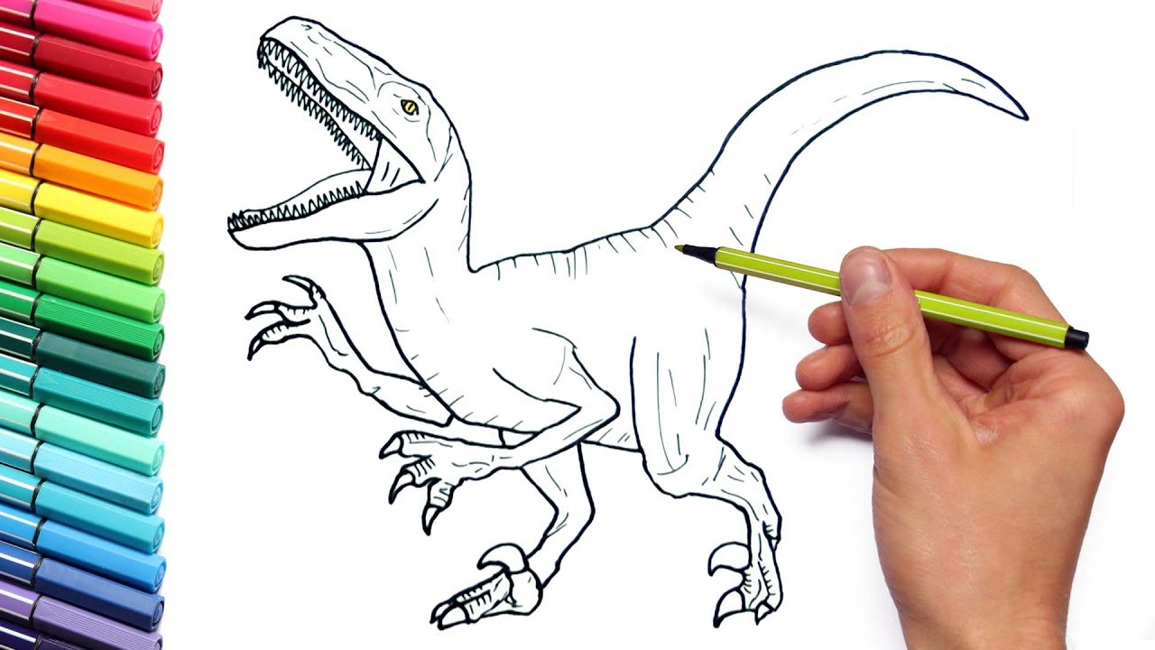 Drawing And Coloring Velociraptor Jurassic World   Dinosaurs Coloring Page  For Children