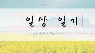 일상Vlog15_5월이야기|10개월임산부_아기옷세탁,밀…