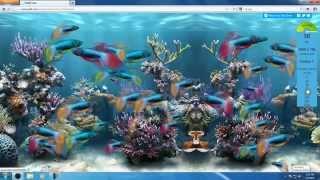 Google Chrome 12 Vs Firefox 5 : Fish tank test