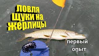 РЫБАЛКА НА ЖЕРЛИЦЫ Новый вид ловли на незнакомом водоеме