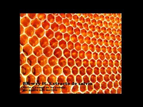 Blowzy ft. Extracto de salvia - Harto el yunque de ser yunque que pronto será martillo