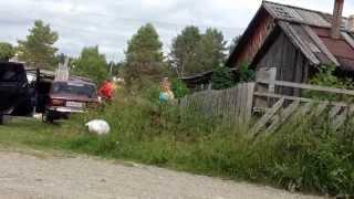 Рыбалка в карелии (день 4)(, 2013-08-26T22:42:29.000Z)