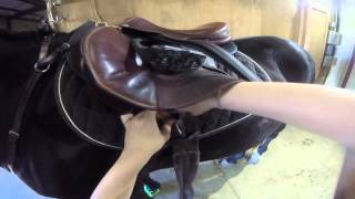 Demonstration Speech - How to get your horse ready to ride