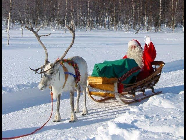 Reno & Papá Noel - Los secretos de renos de Santa Claus - Laponia Finlandia Rovaniemi Videos De Viajes