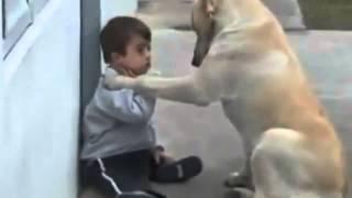 Repeat youtube video ความรักของน้องหมาที่มีให้นู๋น้อย