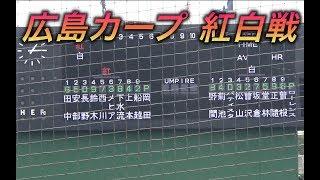 広島カープ 紅白戦!鈴木誠也、長野、菊池も登場!全打者ダイジェスト!