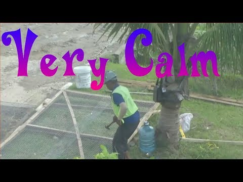 Amazing Skill Worker Makes a Wire Door Under a Coconut Tree